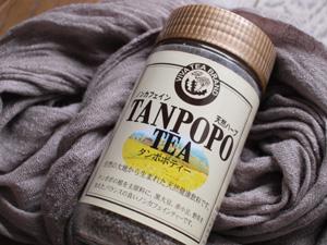 tanpopo.JPG